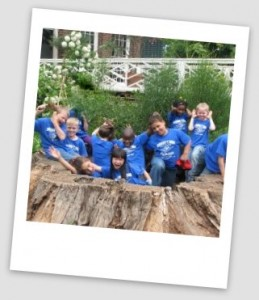 kids in tree 2