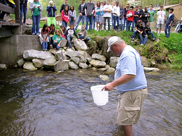 trout release 2a