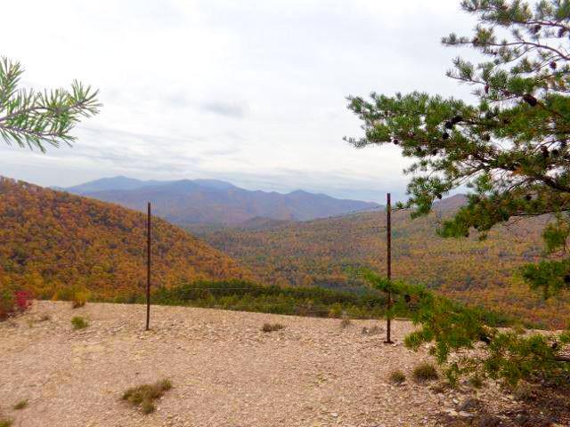 Appalachian_Trail_6