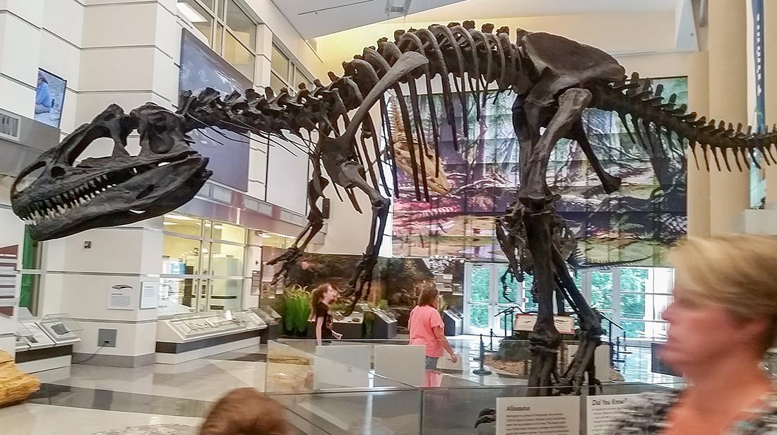Virginia museum of natural history